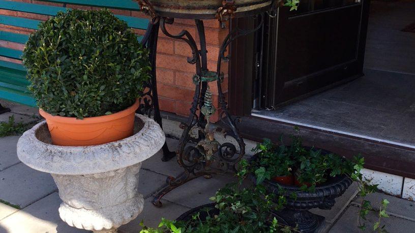 Trädgårdsurnor